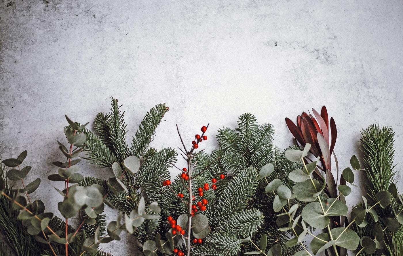 Christmas_Intro