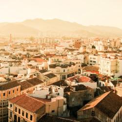 zetcom barcelona